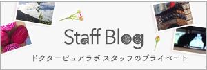 ドクターピュアラボ スタッフ ブログ